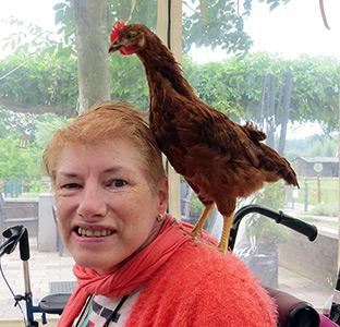 Vrouw zorgt voor kip op zorgboerderij